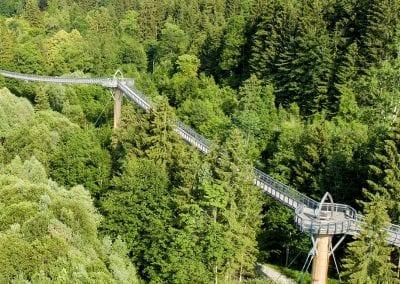 Baumkronenweg Walderlebniszentrum
